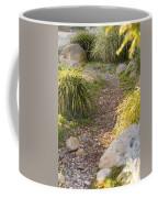 Stone Path Through Garden Coffee Mug by James Forte