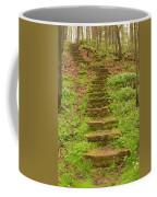Stone Step Trail 1 Coffee Mug