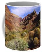 Stonecreek Canyon In The Grand Canyon Coffee Mug