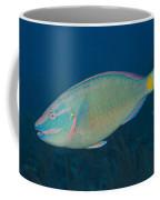 Stoplight Parrotfish On Caribbean Reef Coffee Mug