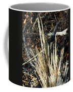 Storm Splinters Coffee Mug