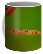 Strategically Placed Raindrops Coffee Mug