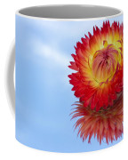 Strawflower Reflection Coffee Mug