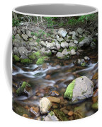 Stream In Nova Scotia Coffee Mug