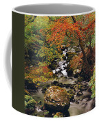Stream Near Glengariff, Co Cork, Ireland Coffee Mug