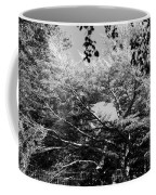 Streched Trees In Black And White Coffee Mug
