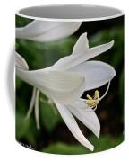 Stretching Stamen Coffee Mug