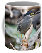 Striated Heron Coffee Mug by Fabrizio Troiani
