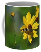 Striped Bee On Wildflower Coffee Mug