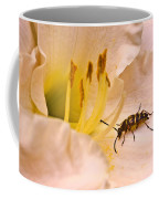 Striped Beetle On Lilly 1 Coffee Mug