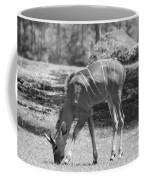 Striped Deer In Black And White Coffee Mug