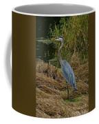 Strolling Coffee Mug