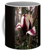 Striped Tulip Coffee Mug