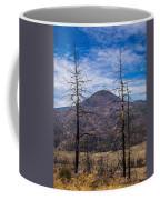 Studies On Sugarloaf Peak 2 Coffee Mug