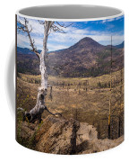 Studies On Sugarloaf Peak 3 Coffee Mug