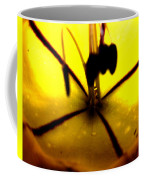 Study Of A Golden Cup Flower 5 Coffee Mug