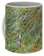 Subalpine Wildflowers Coffee Mug