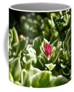 Succulent's Ruby Coffee Mug