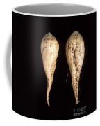 Sugar Beet Breeding Coffee Mug