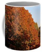 Sugar Maple Coffee Mug