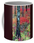 Sumac Slope And Lichen Covered Tree Coffee Mug