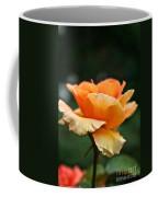 Summer Softness Coffee Mug
