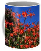 Montbretia, Summer Wildflowers Coffee Mug