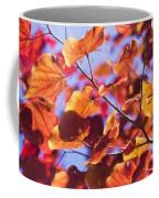Summers Palette Coffee Mug