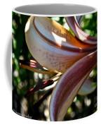 Sun Dappled Coffee Mug