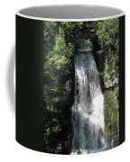 Sun On The Bushkill Falls  Coffee Mug