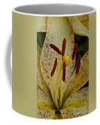 Suncrest Coffee Mug