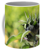 Sunflower Bud Coffee Mug