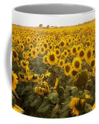 Sunflower Field Coffee Mug