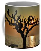 Sunlight And Tree Coffee Mug