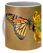 Sunlight Colors Coffee Mug