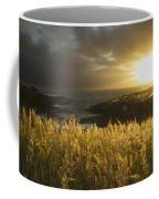 Sunlight Glowing At Sunset And Coffee Mug