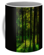 Sunlight In Forest Coffee Mug