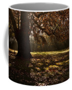 Sunlight In Trees Coffee Mug