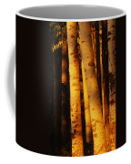 Sunlight On Aspen Trees, Twin Falls Coffee Mug