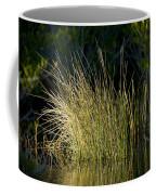 Sunlight On Grass Original Coffee Mug