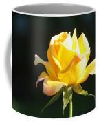 Sunlight On Yellow Rose Coffee Mug