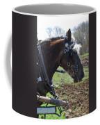 Sunlit  1404a Coffee Mug