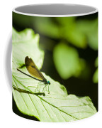 Sunlit Dragonfly Coffee Mug