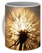Sunlit Goatsbeard Seed Pod In Scenic Saskatchewan Coffee Mug