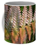 Sunlit Red Fern Coffee Mug