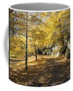 Sunny Day In The Autumn Park Coffee Mug