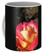 Sunny Opening Coffee Mug