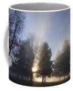 Sunray Through Trees And Fog Coffee Mug