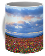 Sunrise Over A Tulip Field At Wooden Coffee Mug