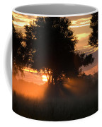 Sunset With Silhouetted Trees Coffee Mug